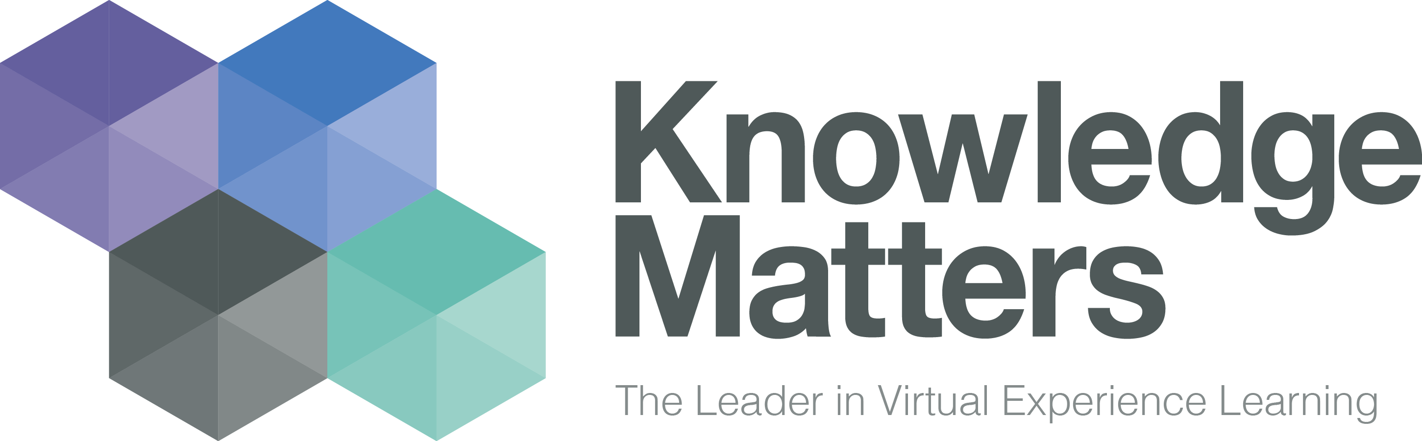 Knowledge Matters - The Leader in Virtual Experience Learning